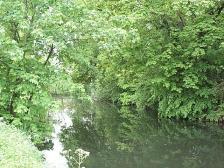 Teichanlage bei Schloß Lohe