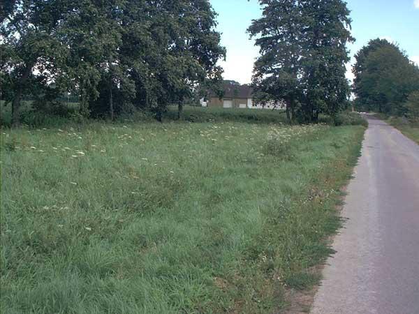 Alte Flößwiese