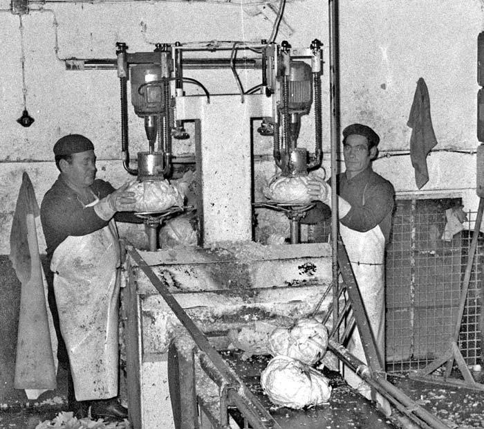 Die Strunkbohrmaschine