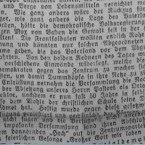 Westfälischer Volksfreund am 14.1.1919 (3 von 3) - Zentrumspartei